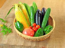 Vegetables. Cucumber   corn   green  pepper   tomato  bitter  gourd  vegetables   white  background  fresh  vegetable   green   collection   red, healthy   Stock Photos