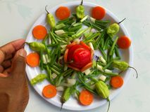 VEGETABLES AND CULINARY ART Royalty Free Stock Photo