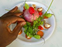 VEGETABLES AND CULINARY ART Stock Photography