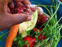 Vegetables and culinary art Royalty Free Stock Photography