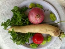 VEGETABLES AND CULINARY ART Royalty Free Stock Photos