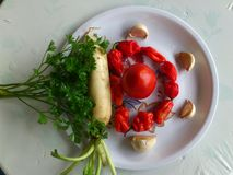 VEGETABLES AND CULINARY DECORATION. Here are some red chilies,,nave,garlics,parsley and tomato Royalty Free Stock Images