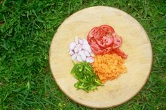 Vegetables on a cutting board in a beautiful tropical garden. Sliced tomatoes, onions, green pepper and carrots on a cutting board in a beautiful tropical garden Stock Image