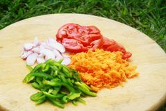 Vegetables on a cutting board in a beautiful tropical garden. Tomatoes, onions, green pepper and carrot on a cutting board in a beautiful tropical garden Royalty Free Stock Image