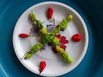 Vegetables,decoration and culinary art Royalty Free Stock Photo