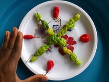 Vegetables,decoration and culinary art Royalty Free Stock Photos