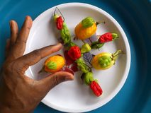 Vegetables,decoration and culinary art Stock Photography