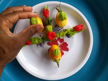 Vegetables,decoration and culinary art Stock Images