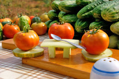Vegetables dinner party royalty free stock image