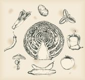 Vegetables drawing- isolated objects Stock Image