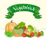 Vegetables drawing set group with text banner Royalty Free Stock Photography