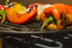 Vegetables on a electrik barbecue Royalty Free Stock Images