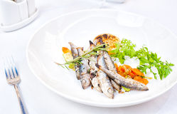 Vegetables En Mirepoix with Grilled Herring Stock Photos