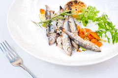 Vegetables En Mirepoix with Grilled Herring Royalty Free Stock Image