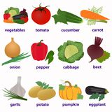 Vegetables. English-language cards vector illustration