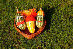 Vegetables with Faces in a Basket. Three decorative marrows outside in a wicker basket all with funny faces and expressions Royalty Free Stock Image