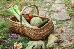 Vegetables from a farm in a wicker basket stock photography