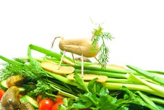 Vegetables with figure of sheep closeup Stock Photos