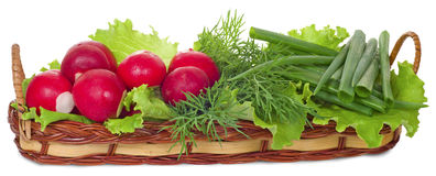 Vegetables in a flat basket. Radishes, stem onions, lettuce, dill in a basket, isolated on white background Royalty Free Stock Images