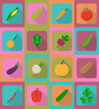 Vegetables flat icons with the shadow vector illustration Royalty Free Stock Photography