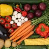 Vegetables food background Stock Image