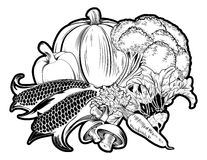 Vegetables food group illustration vector illustration
