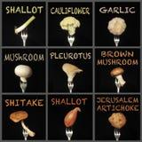 Vegetables on fork Stock Image
