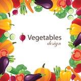 Vegetables frame vector illustration