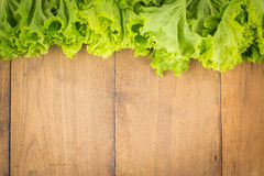 Vegetables Frame Background. Fresh vegetables on the old wooden board Stock Photography