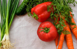 Vegetables frame on the cloth. Tomato cucumber carrot onion on the grey cloth Stock Images