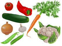 Vegetables. Fresh vegetables for cooking. Vector illustration of eight types of vegetables Royalty Free Stock Photography