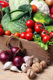 Vegetables. Fresh farm vegetable in a basket Royalty Free Stock Photos