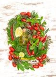 Vegetables fresh herbs  olive oil. Food background Stock Images