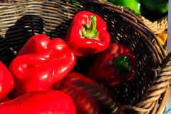 Vegetables fresh at local farmers market in New York Royalty Free Stock Photos