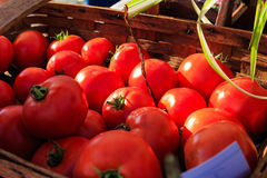 Vegetables fresh at local farmers market in New York Stock Image