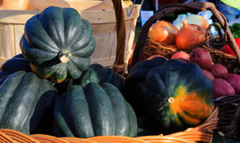 Vegetables fresh at local farmers market in New York Stock Images