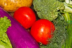 Vegetables fresh multicolor Royalty Free Stock Photo
