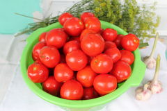 Vegetables. Fresh pulp red tomato with pink garlic and big aroma tuft of garden verdure Stock Photos