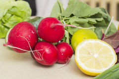 Vegetables. Fresh radishes and other vegetables Stock Image