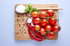 Vegetables fresh tomato with onion, garlic and spices Stock Image