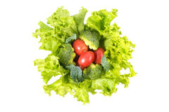 Vegetables. Fresh Vegetables on a white background Royalty Free Stock Photo