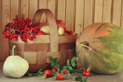 Vegetables, fruit and berries Stock Photo