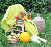 Vegetables, fruit on a grass. Vegetables, fruit, large bottle lie on a grass Royalty Free Stock Photos