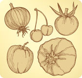 Vegetables and fruit set, hand-drawing. Vector ill Stock Photos