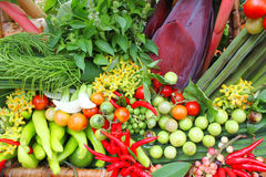 Vegetables and fruits in basket decoration Stock Photography