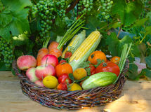 Vegetables and fruits in the basket Stock Photography