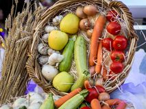 Vegetables and Fruits in a basket on Thanksgiving_ royalty free stock image