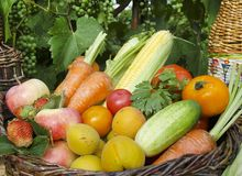 Vegetables and fruits in the basket royalty free stock images
