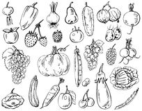 Vegetables, fruits and berries Royalty Free Stock Photography