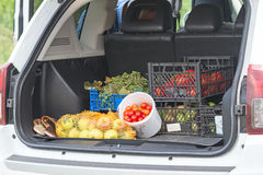 Vegetables and fruits in the car trunk Stock Photo